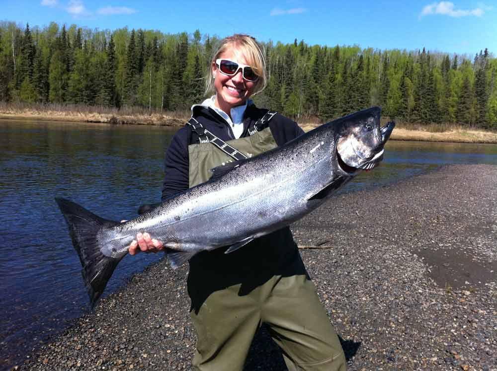 Alaska Salmon Pictures, Photos of Alaska Salmon, King Salmon